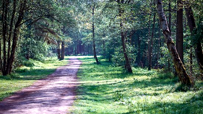Irchester Country Park